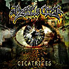 BATTLE CRY - Cicatrices