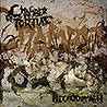 CHAMBER OF TURTURE - Necrodomain