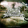 DISARTICULATING EXTINGUISHMENT - Psalms of Wrath
