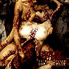 NECROTIC FLESH - Gore Gourmet